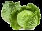 Choux (choucroute, chinois, vert, etc...)