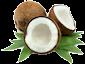Noix de coco (lait, rapée etc...)